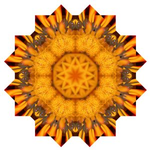 How to make a mandala in photoshop. Top Specialists are working for you.