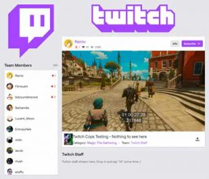 How to make a twitch team. Greatest Specialists will work with you.