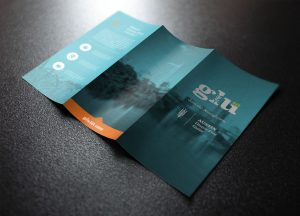 How to make tri fold brochure. Finest expert will work with you.